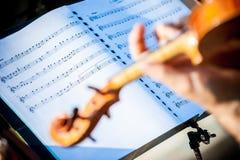 Folha do violino Foto de Stock Royalty Free