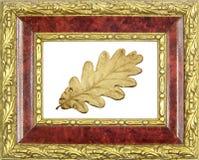 Folha dourada quadro do carvalho Imagens de Stock Royalty Free