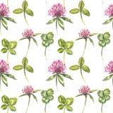 A folha e as flores do trevo entregam a ilustração sem emenda tirada da aquarela do teste padrão Dia feliz dos patricks de Saint Foto de Stock Royalty Free