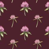 A folha e as flores do trevo entregam a ilustração sem emenda tirada da aquarela do teste padrão Dia feliz dos patricks de Saint Imagens de Stock