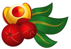 Folha e fruta de Guarana Fotografia de Stock Royalty Free