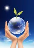 Folha e globo verdes imagem de stock