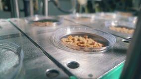 A folha está selando placas com petiscos do pão mecanicamente vídeos de arquivo