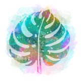 Folha exótica tropical na moda multicolorido em um fundo abstrato Ilustração botânica do vetor, elementos para o projeto Foto de Stock Royalty Free