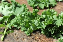 Folha fresca da couve da couve no fundo de madeira Folhas verdes do vegetal Vista superior Comer saudável, alimento do vegetarian Fotos de Stock