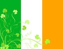Folha irlandesa do shamrock Foto de Stock Royalty Free