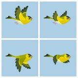 Folha masculina de voo do duende da animação de Siskin do europeu ilustração stock