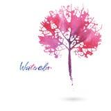 Folha natural da aquarela Logotipo de Eco, trabalhos criativos Objeto isolado em um fundo branco ilustração do vetor
