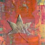 Folha no fundo pintado Imagens de Stock Royalty Free