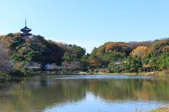 Folha no jardim de Sankeien, Yokohama do outono, Kanagawa, Japão Imagens de Stock Royalty Free