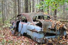 Folha oxidada Foto de Stock