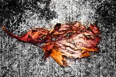 Folha podre no asfalto Fotografia de Stock