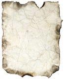 Folha queimada amarrotada Imagem de Stock Royalty Free