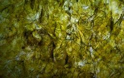 Folha secada de Nori Seaweed, do ingrediente japonês da culinária para envolver Rolls do sushi ou do Onigiri Imagem do macro da t fotografia de stock