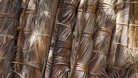 Folha secada do coco no pacote Fotos de Stock Royalty Free