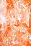 Folha transparente Fotografia de Stock