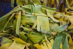 Folha usada da banana no lixo Fotografia de Stock Royalty Free