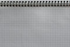 Folha vazia do bloco de notas com anéis Fotos de Stock