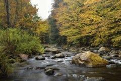 A folhagem de outono brilhantemente colorida alinha o Connecticut River de pressa em Vermont, E.U. imagens de stock