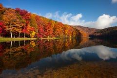 Folhagem de outono do lago Sherando imagens de stock