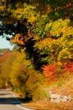 Folhagem de outono em Bedford, New Hampshire, EUA Fotografia de Stock