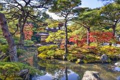 Folhagem de outono em Kyoto imagens de stock