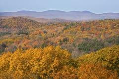 Folhagem de outono nas madeiras de Connecticut ocidental, do Mohawk Mounta fotografia de stock royalty free