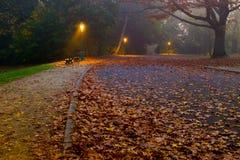 Folhagem de outono no parque Foto de Stock Royalty Free