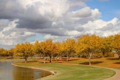 Folhagem de outono no parque Fotografia de Stock Royalty Free