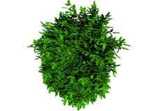 Folhas 3d verdes para o fundo Fotos de Stock Royalty Free