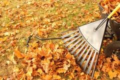 Folhas ancinho e vagão Fotos de Stock Royalty Free