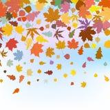 Folhas bonitas do autum de encontro ao céu EPS 8 ilustração do vetor