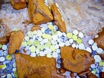 Folhas brilhantes do álamo tremedor no córrego Fotografia de Stock Royalty Free