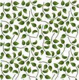 Folhas brilhantes do teste padrão do fundo Imagens de Stock Royalty Free
