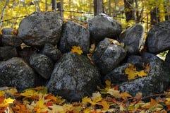 Folhas caídas em uma parede de pedra em uma madeira de Nova Inglaterra Foto de Stock