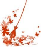 Folhas caídas varrendo Imagens de Stock Royalty Free