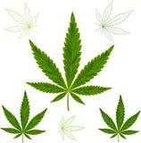 Folhas coloridas do cannabis do mosaico Isolado fácil alterar Imagens de Stock Royalty Free