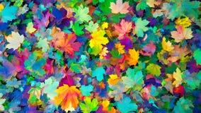 Folhas coloridas do fundo do outono do outono, cores da queda Foto de Stock
