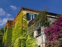 Folhas coloridas na casa Foto de Stock