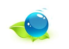 Folhas com esfera da água Ilustração Stock