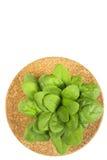 Folhas cruas dos espinafres no fundo branco Imagens de Stock