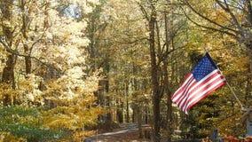 Folhas da árvore da queda em torno de acenar a bandeira americana vídeos de arquivo