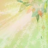 Folhas da abstração. Imagens de Stock