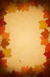 Folhas da acção de graças em um fundo de papel velho Fotos de Stock Royalty Free
