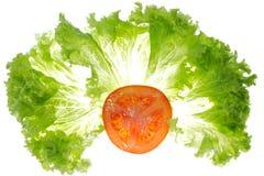 Folhas da alface e fatia do tomate Imagens de Stock
