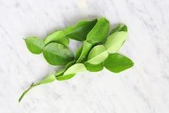 Folhas da bergamota na tabela Fotos de Stock