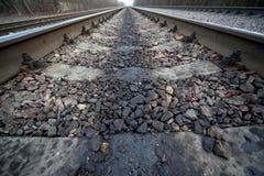 Folhas da estrada de ferro entre a madeira e os estabelecimentos imagens de stock royalty free
