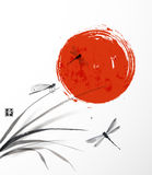Folhas da grama, das três libélulas e do sol Fotografia de Stock