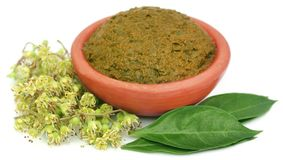 Folhas da hena de Ayurvedic fotografia de stock royalty free