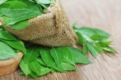 Folhas da hena de Ayurvedic imagens de stock